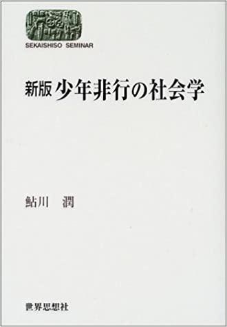 書籍新版 少年非行の社会学(鮎川 潤/世界思想社)」の表紙画像